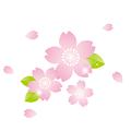 京都桂病院からのお知らせ